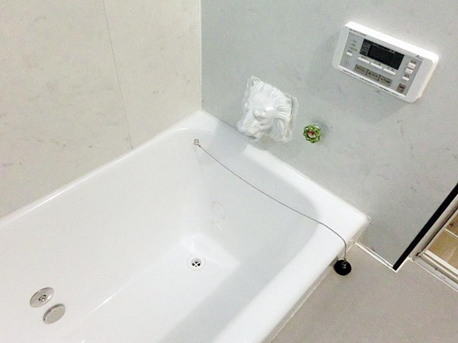 浴室ライオン